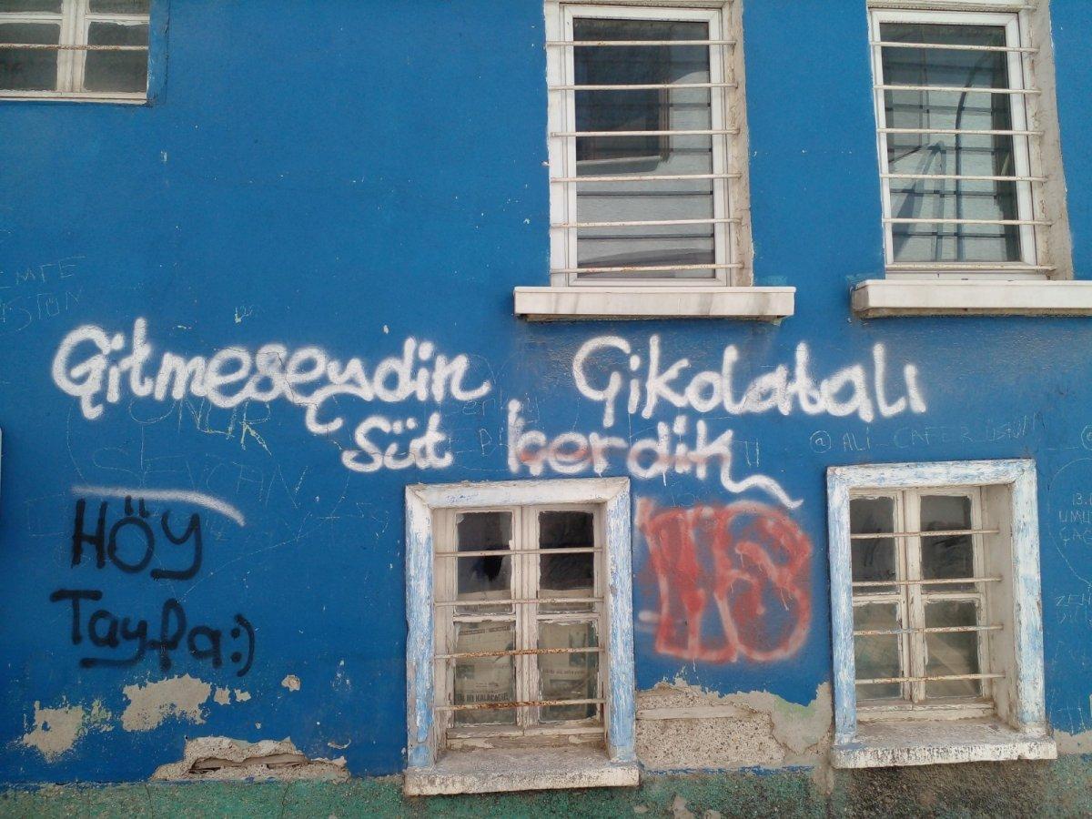 Eskişehir'de tarihi evlerin duvarları sprey boyalarla karalandı #3