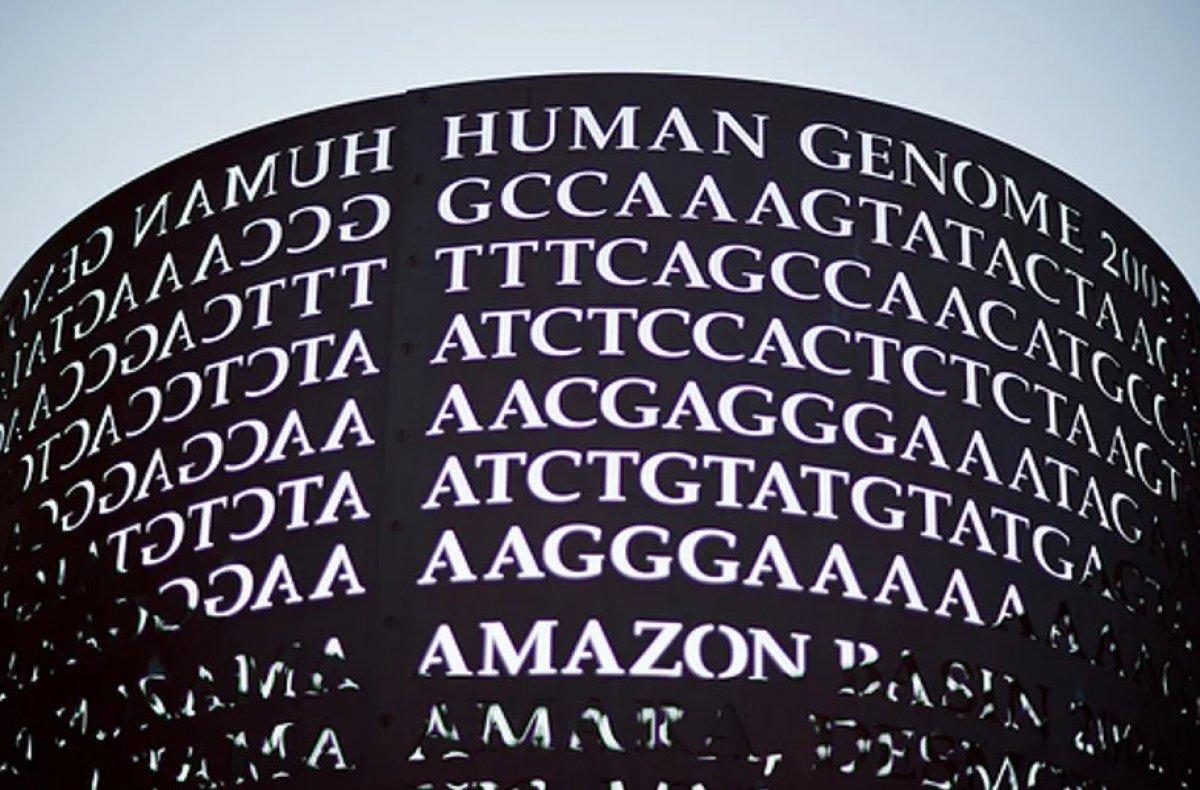 Türk toplumunun genetik yapısı analiz edildi #3