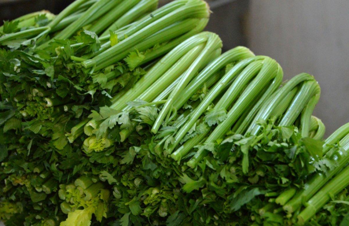 Alerjiye neden olan 8 sebze