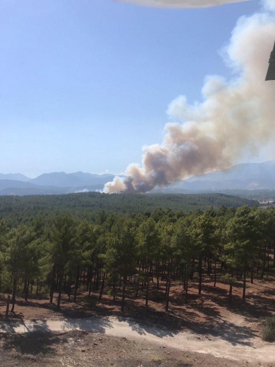 Kaş ta orman yangını #2