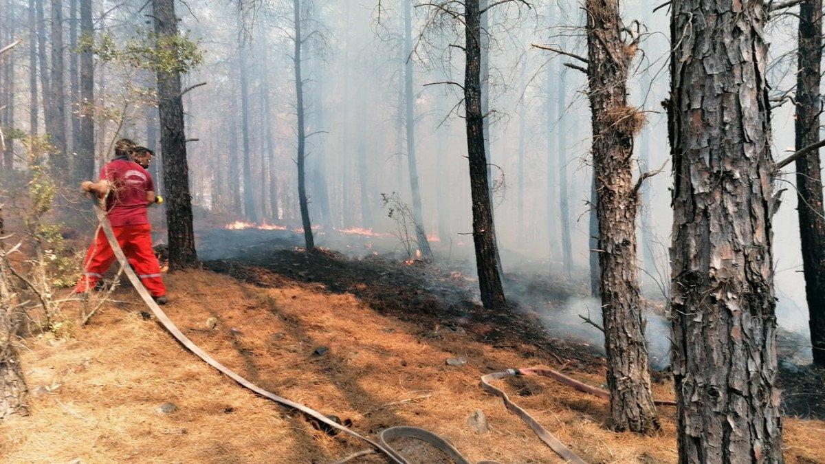 Kaş ta orman yangını #1