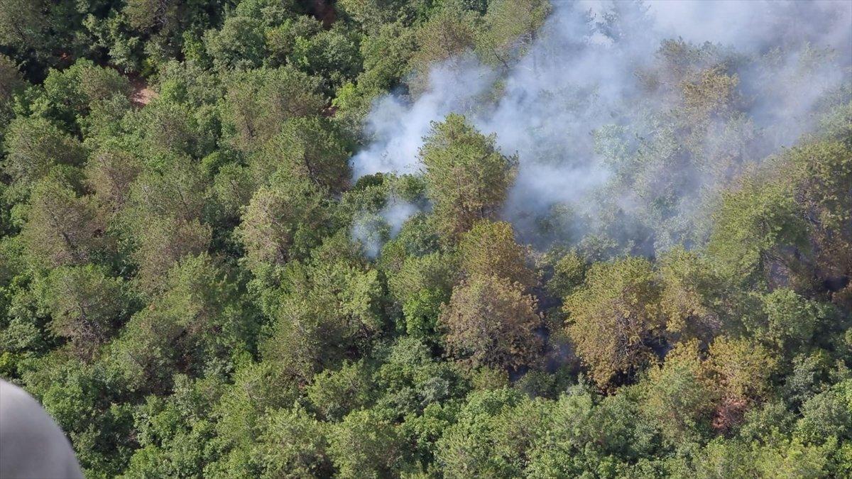 Balıkesir de orman yangını #2