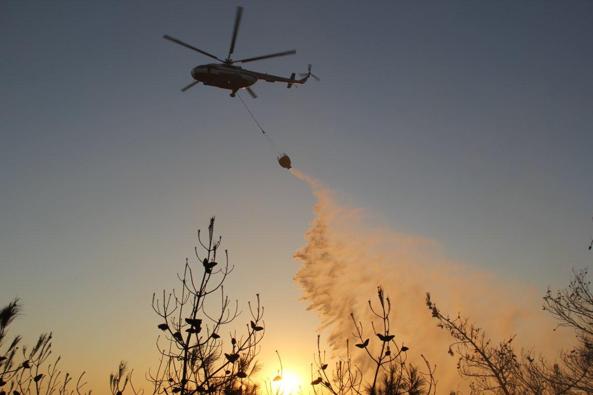 İzmir de ormanlık alanda çıkan yangın kontrol altında #1