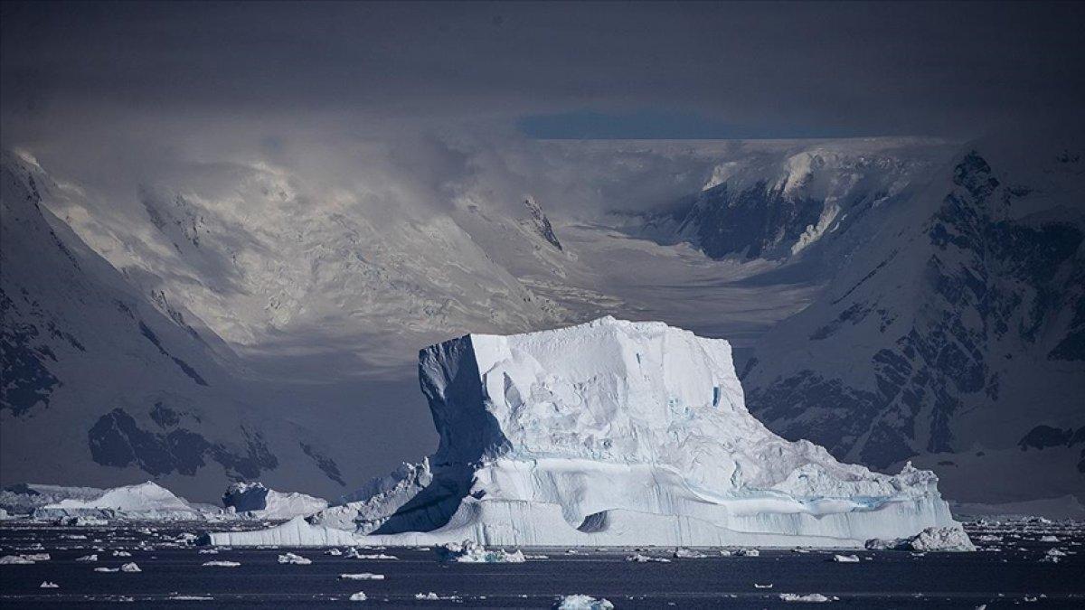 Türkiye den Antarktika ya omurgasız hayvanları inceleme seferi #2