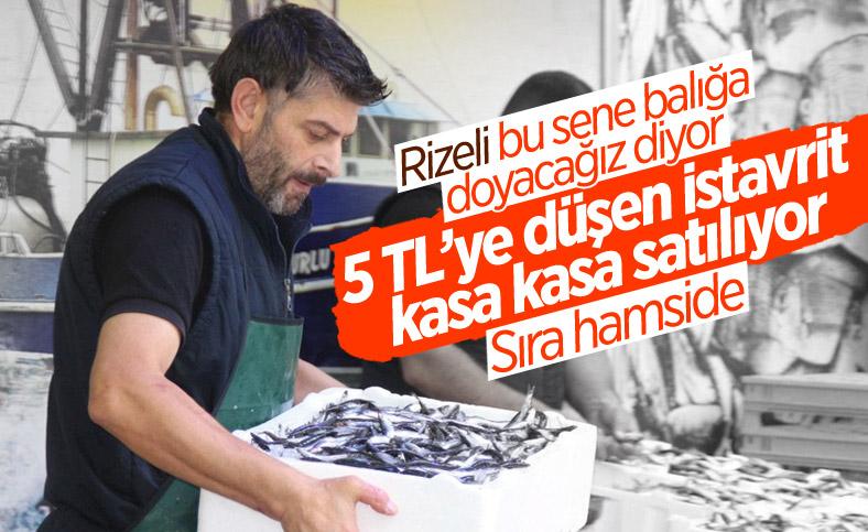 Rize'de kilosu 5 TL'ye düşen istavrit, kasalarla satılıyor