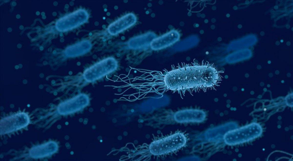 Antibiyotikler kolon kanseri riskini artırıyor #3