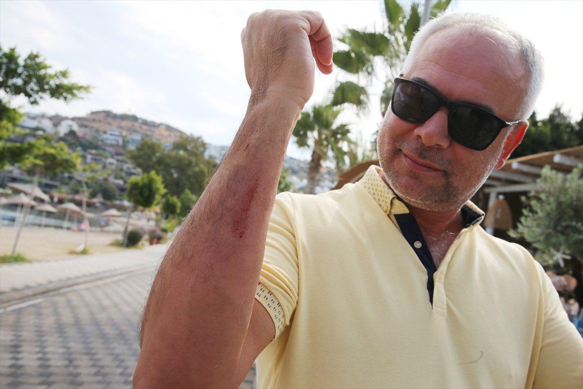 Muğla'da görülen camgöz köpek balığı, güvenli alana bırakıldı  #6