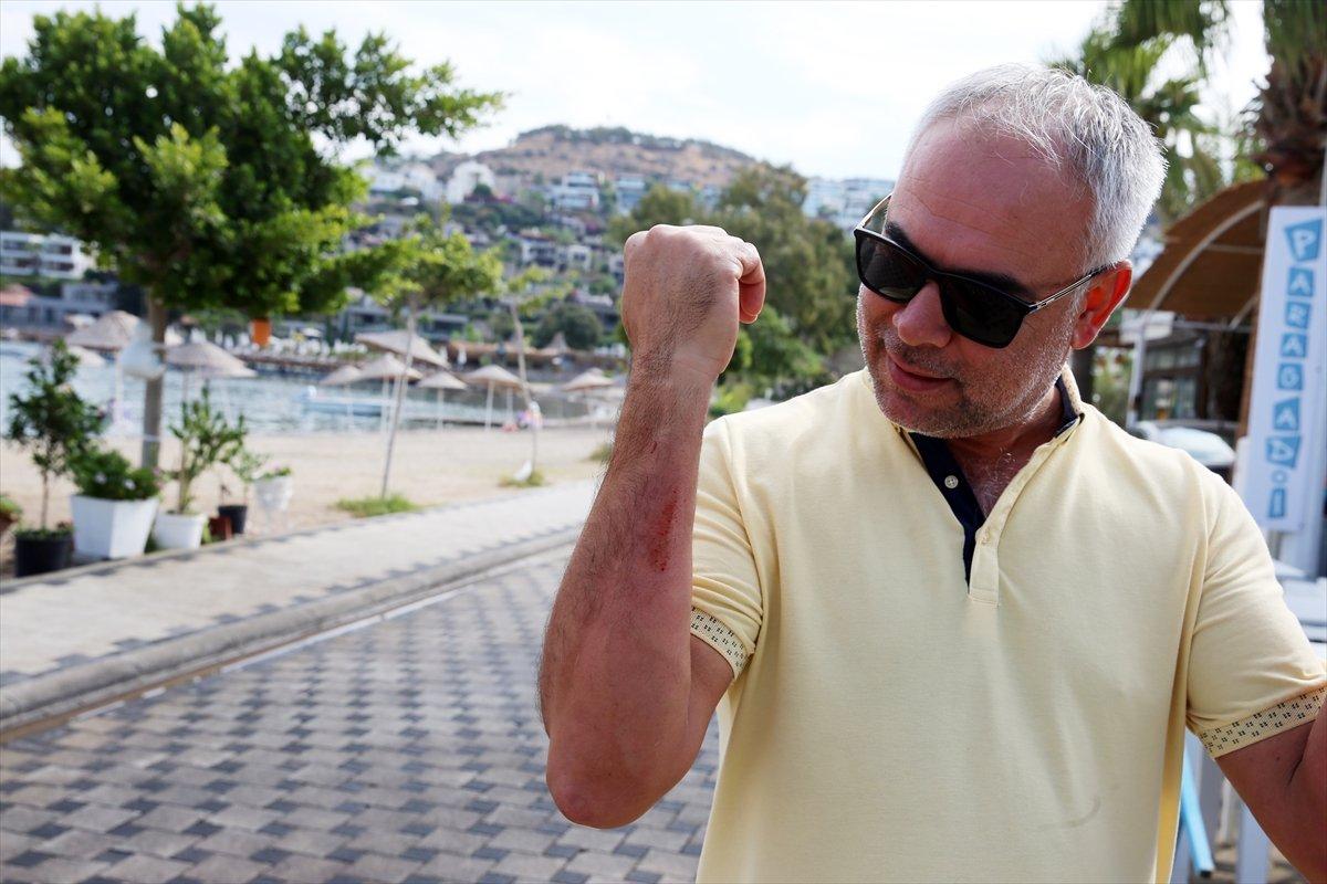 Muğla'da görülen camgöz köpek balığı, güvenli alana bırakıldı  #7