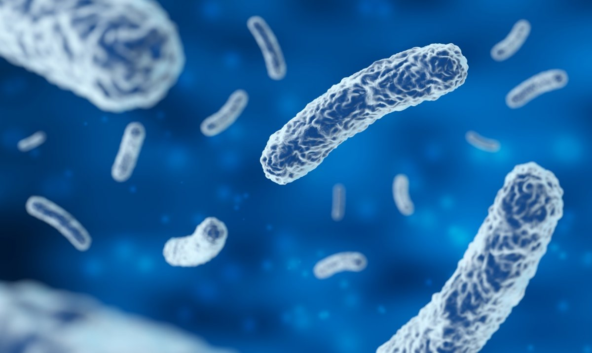 Probiyotiklerin sağlığa 5 inanılamaz faydası #3