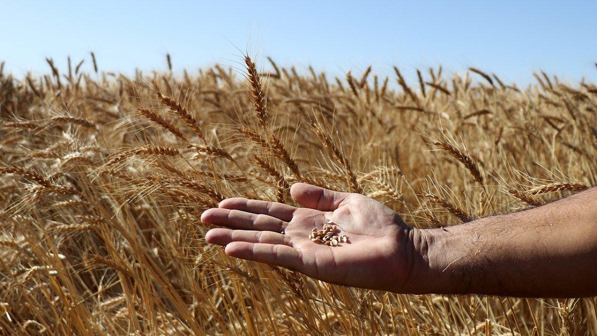 Suya göre tarım dönemi başlıyor #2