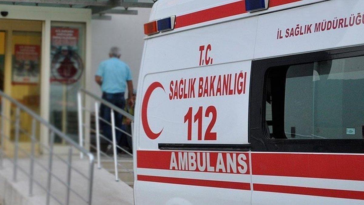 Türkiye de mantardan zehirlenenlerin sayısında artış gözüktü #2