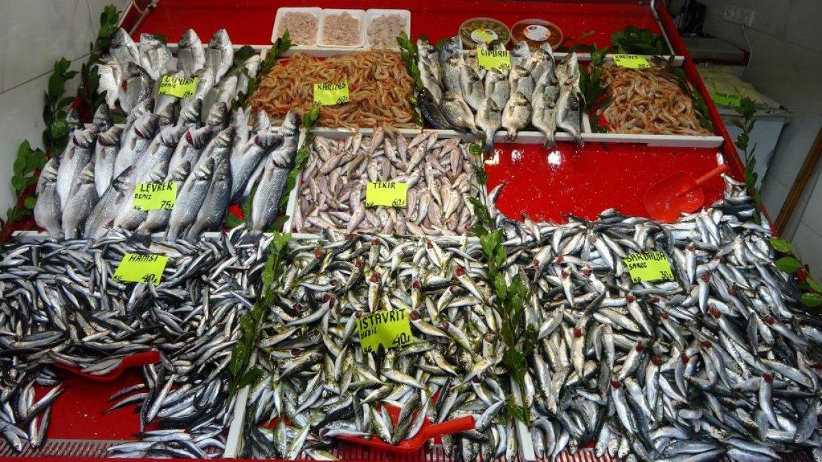 Çanakkale'de balık tezgahlarında fiyatlar düşüşe geçti  #1