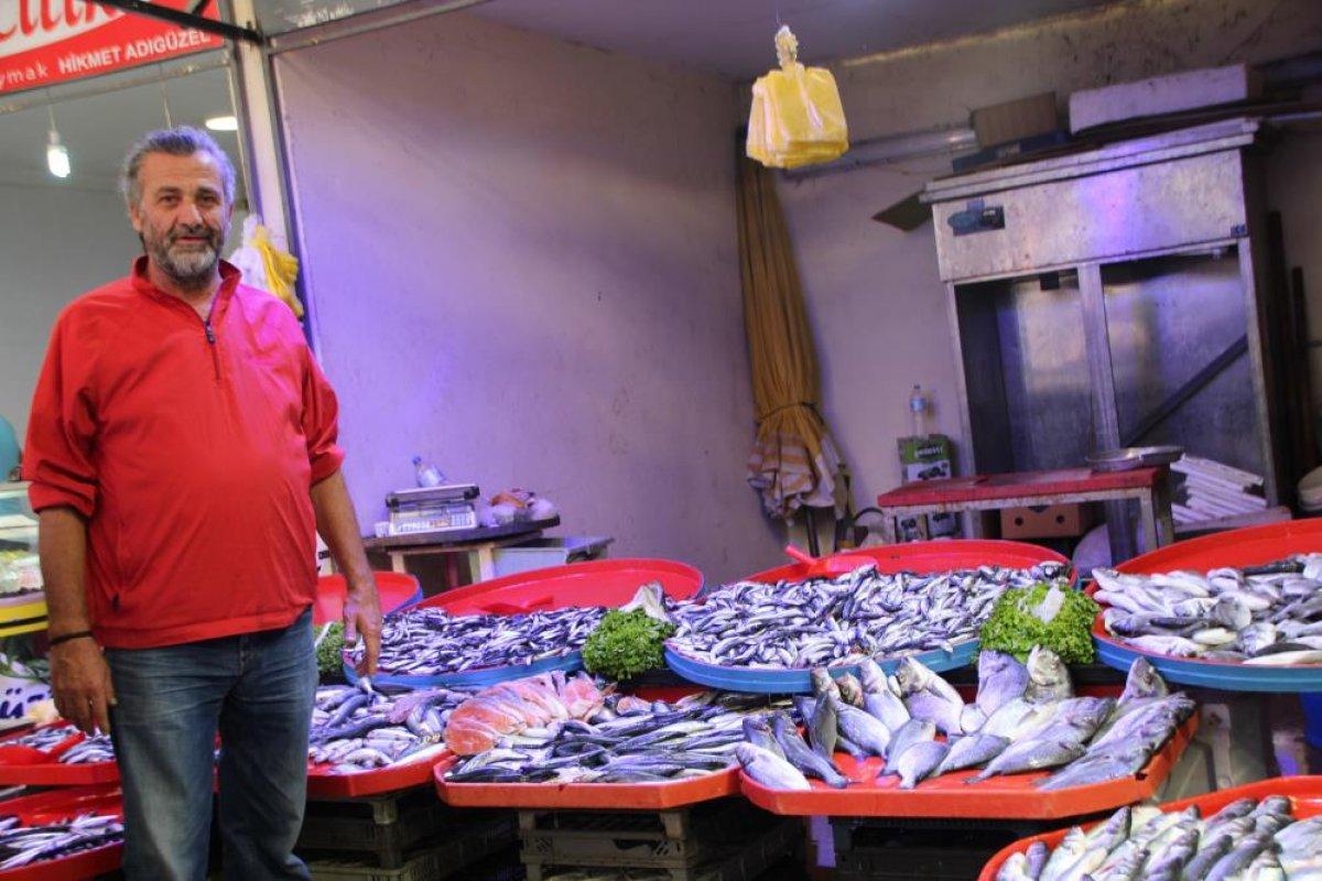 Bilecik te halk balık tezgahlarına koştu: Palamut yok denecek kadar az #1