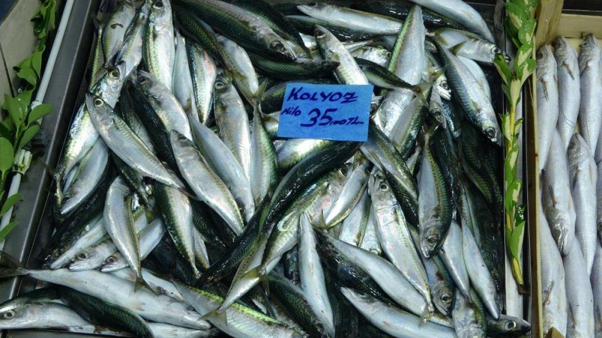 Çanakkale'de balık tezgahlarında fiyatlar düşüşe geçti  #8