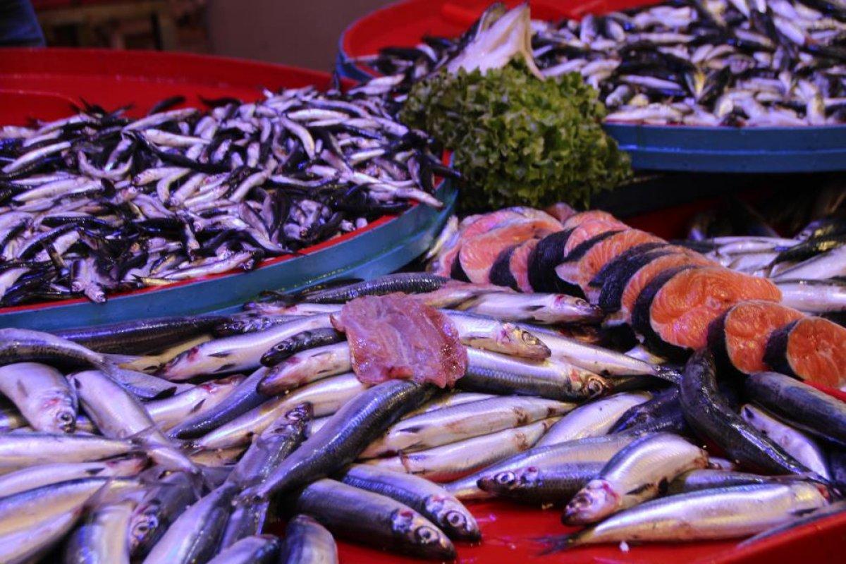 Bilecik te halk balık tezgahlarına koştu: Palamut yok denecek kadar az #7