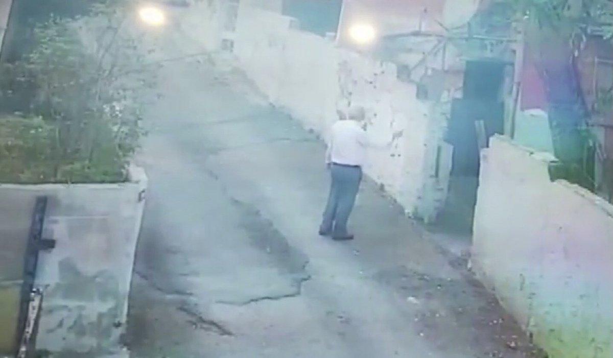 Beykoz'da, sokak köpeğini besleyen adamı komşuları tehdit etti  #2