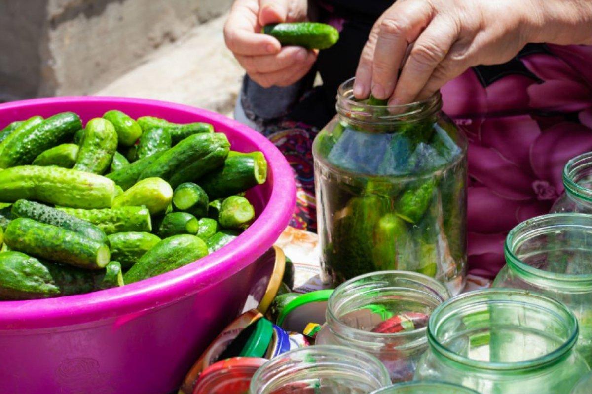 Tam mevsimi: Püf noktalarıyla salatalık turşusu tarifi #3
