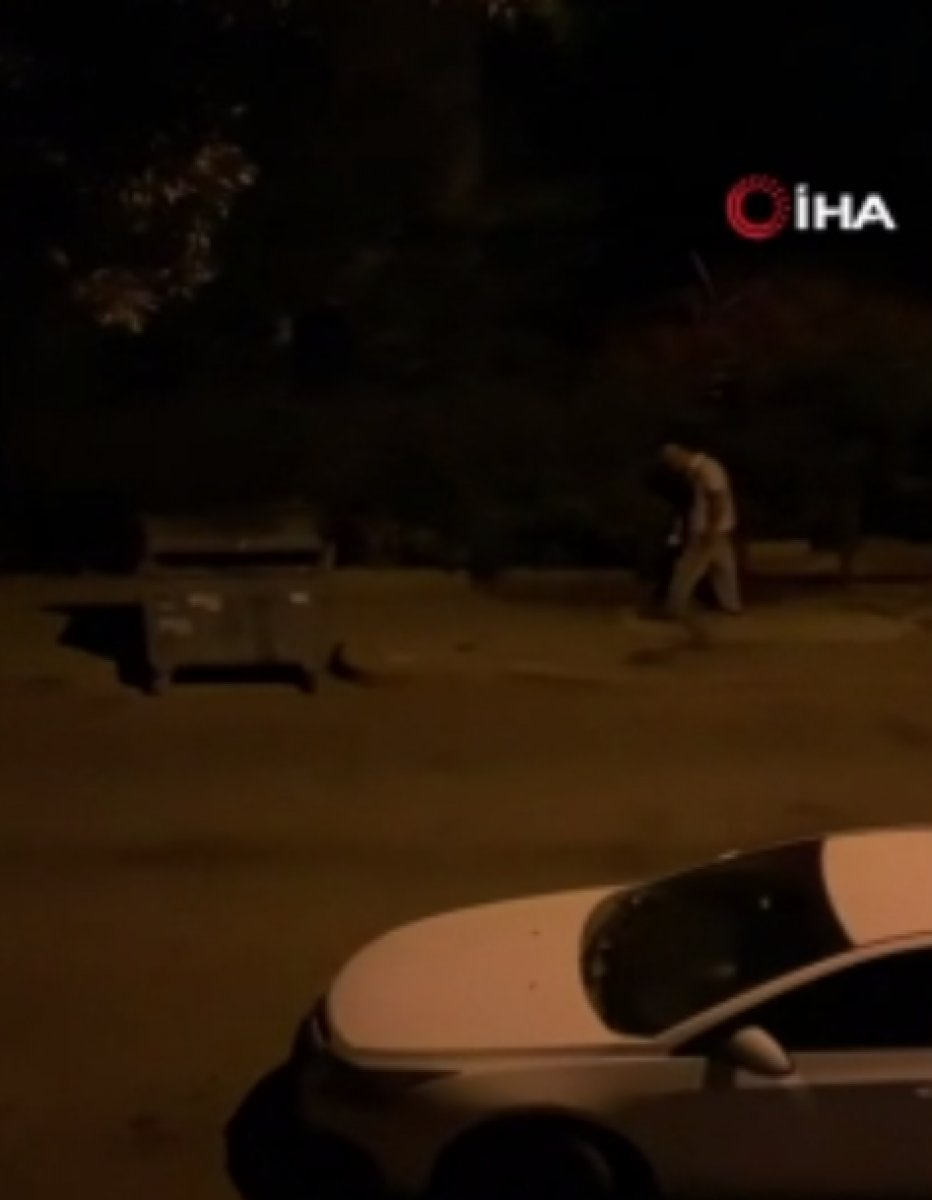 Ankara da mahallelinin hayvanlara bıraktığı mamalar tekmelendi #2