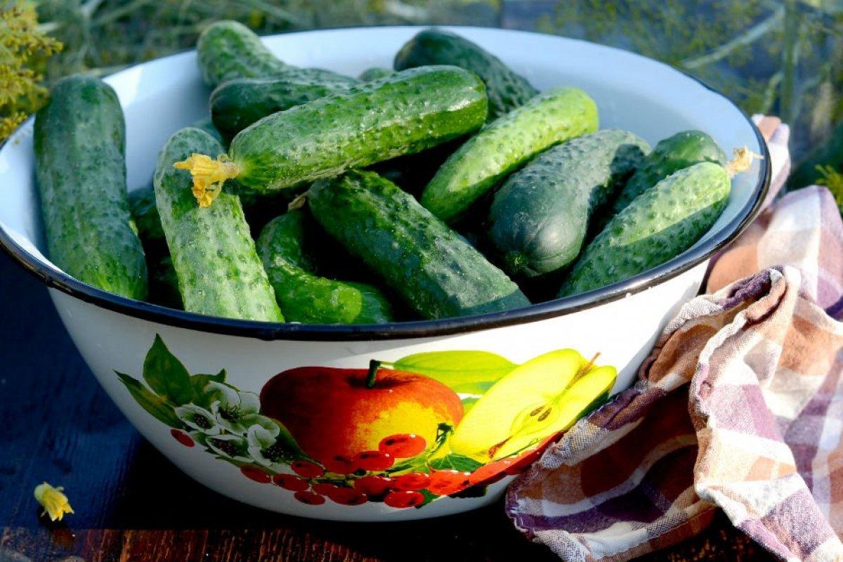 Tam mevsimi: Püf noktalarıyla salatalık turşusu tarifi #1
