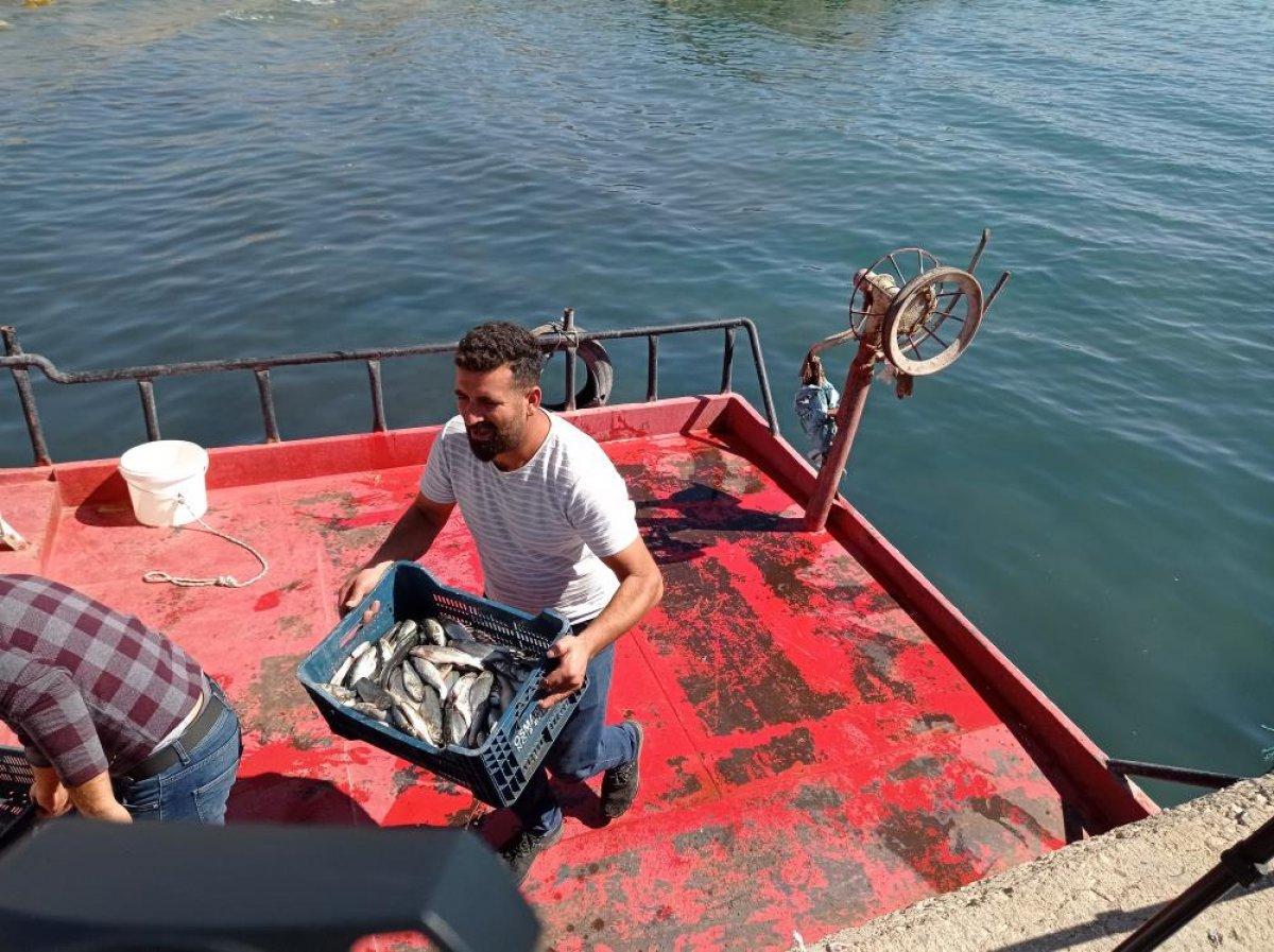 Van Gölü'nde zemin temizlendi, tekneler yeniden göle açıldı #5