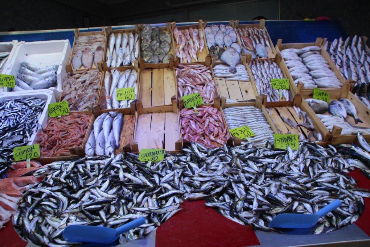 Bilecik te halk balık tezgahlarına koştu: Palamut yok denecek kadar az #6