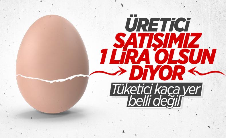 Yumurta fiyatları katlandı: Üreticilerden 'adet fiyatını 1 lira yapalım' talebi