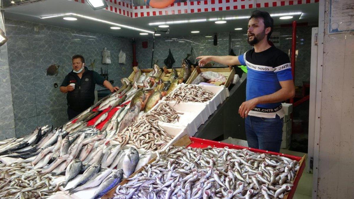 Samsun da son zamanların en bereketli balık sezonu yaşanıyor #6