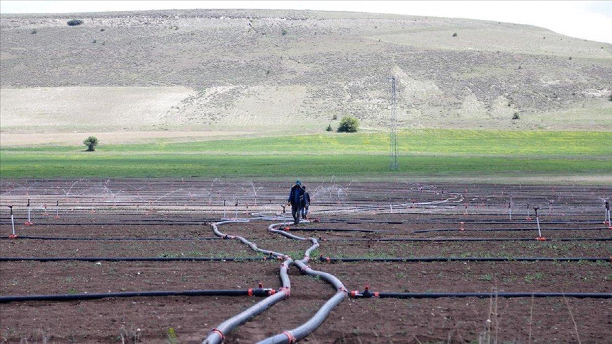 Çiftçi tarımsal sulama elektriğinde vergi indirimi bekliyor #1