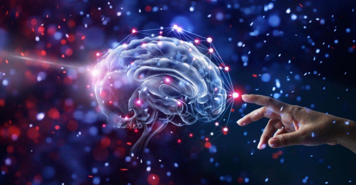 Bilim insanları, beyin hasarlarını tedavi etme yöntemi geliştirdi #1
