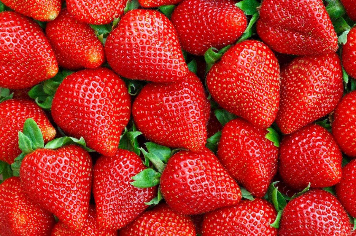 Doğal antibiyotik etkili 10 besin #10