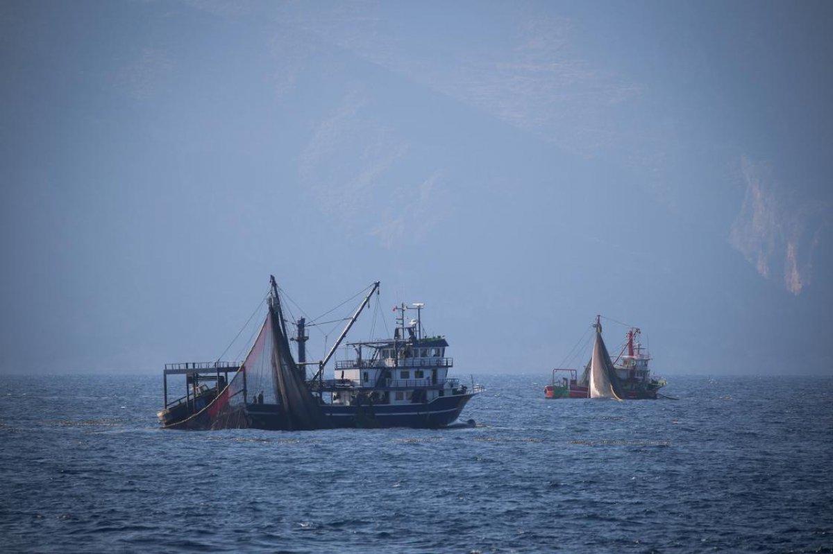 Hataylı balıkçıların av mesaisi başladı #2