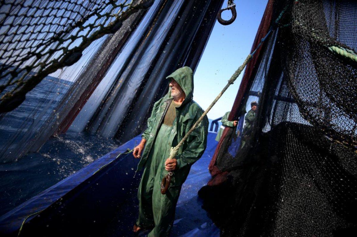 Hataylı balıkçıların av mesaisi başladı #5