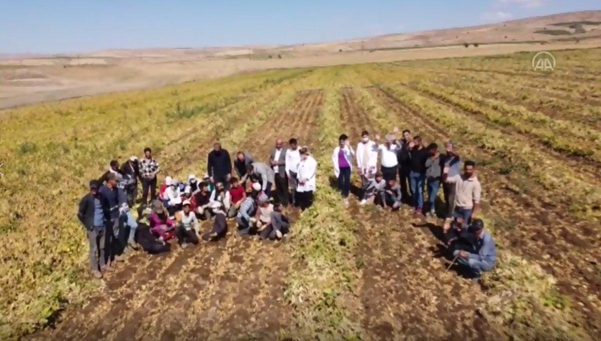 Bekir Pakdemirli: Kuru fasulye üretiminde Cumhuriyet tarihi rekoru kırıldı #4