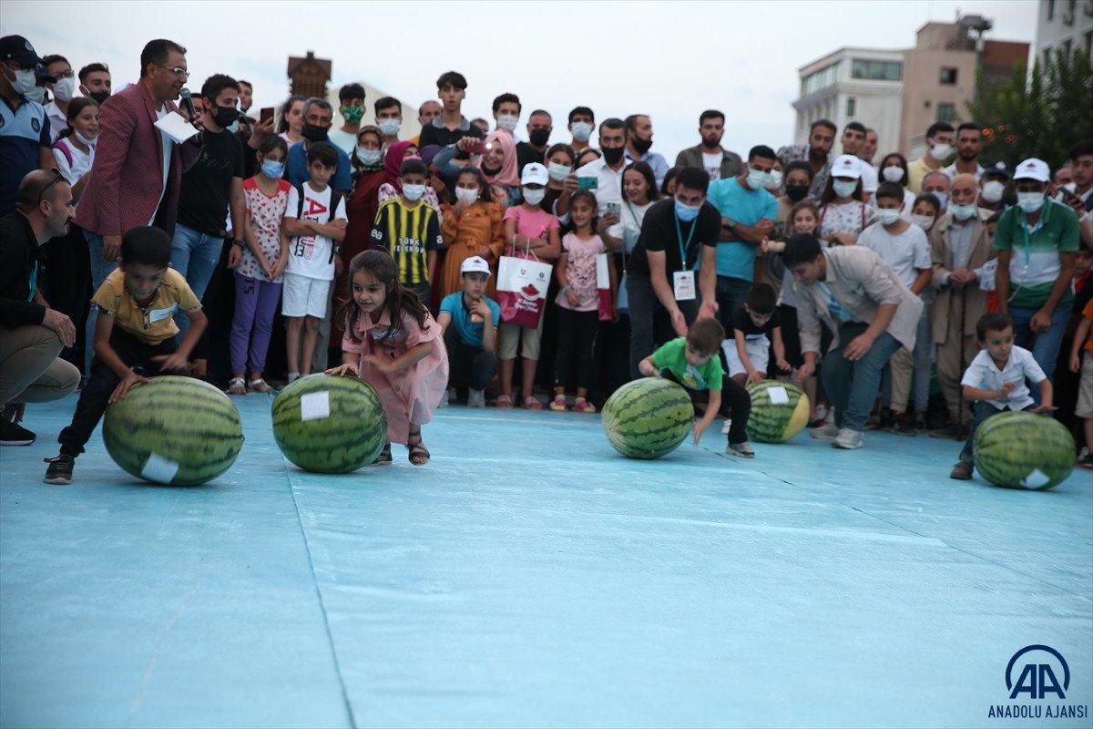 Diyarbakır da karpuz festivalinin birincisi: 45 kilo 500 gram  #5