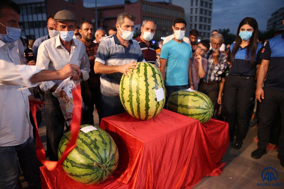 Diyarbakır da karpuz festivalinin birincisi: 45 kilo 500 gram  #6