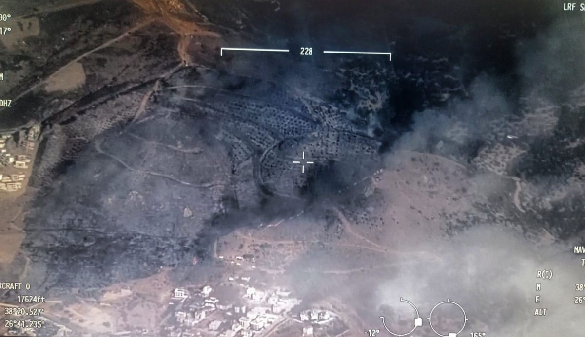 İzmir de makilik alanda yangın çıktı #1