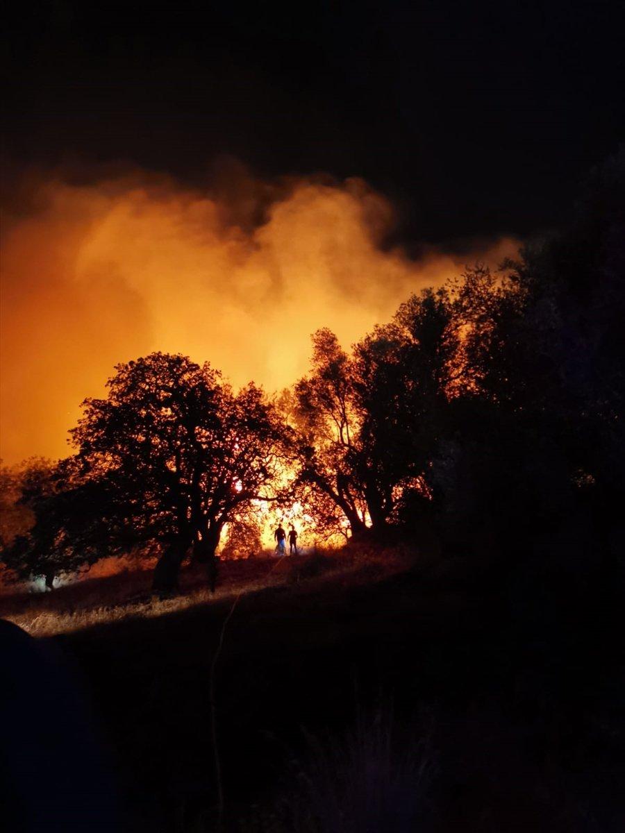 Bodrum da çıkan yangın söndürüldü #1