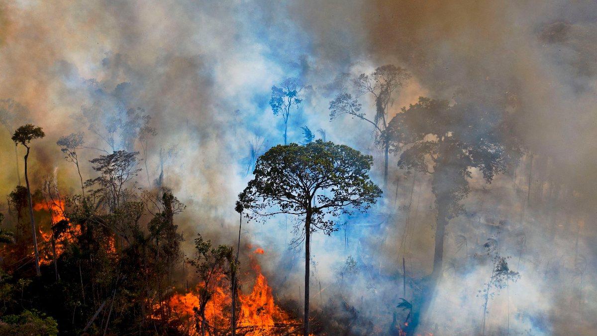 Yangınlar nedeniyle karbondioksit emisyonlarında artış