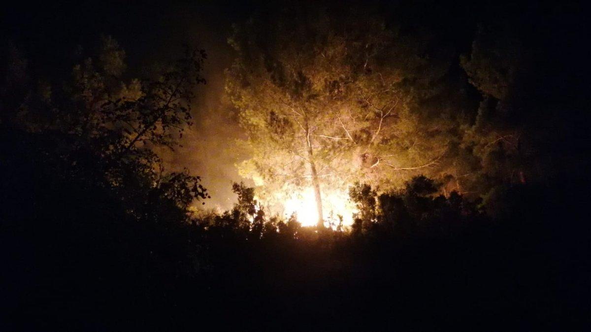 Manavgat ta başlayan yangın kontrol altına alındı #1