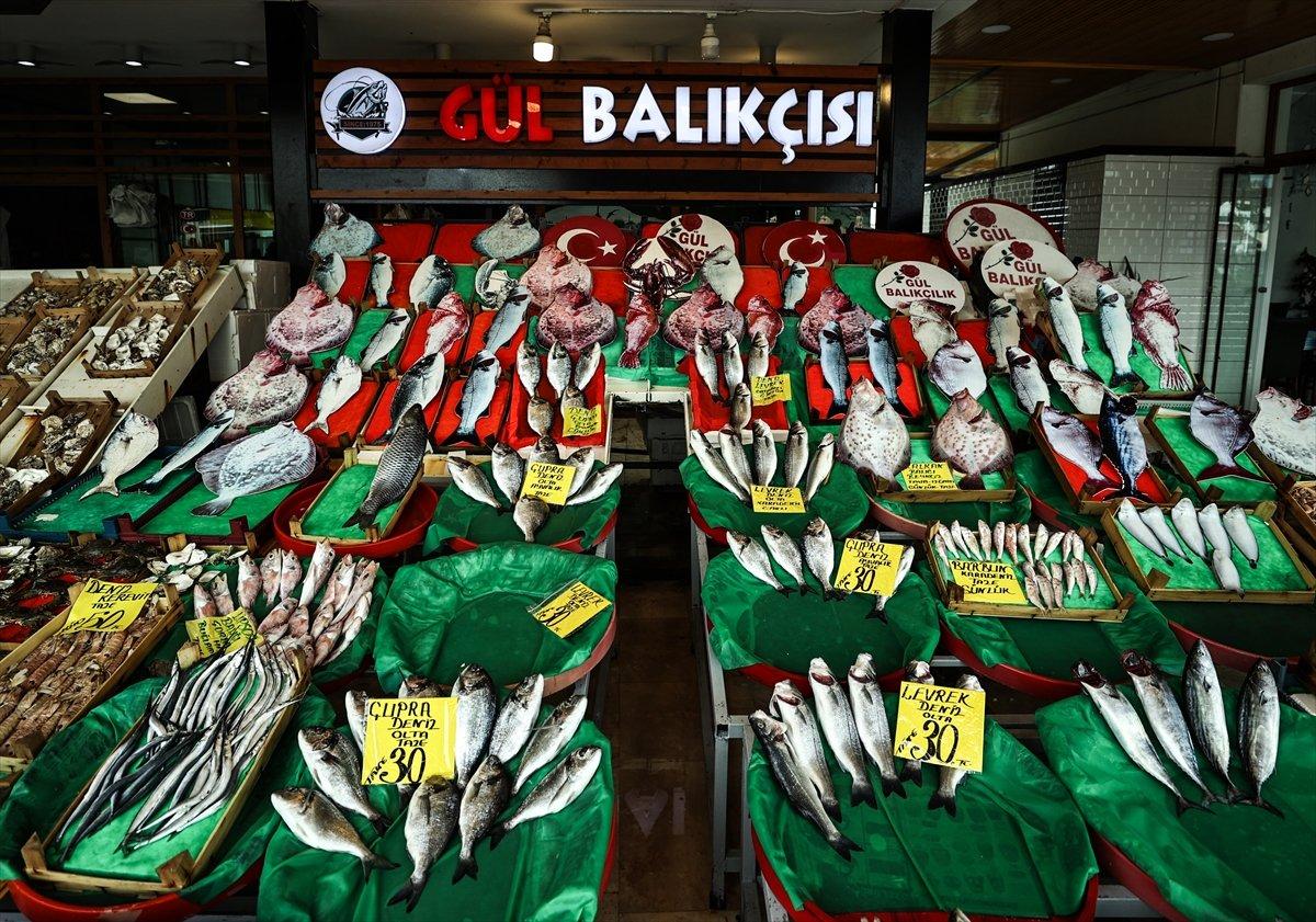 İstanbullu balıkçılar: Fiyatlar oldukça iyi #5