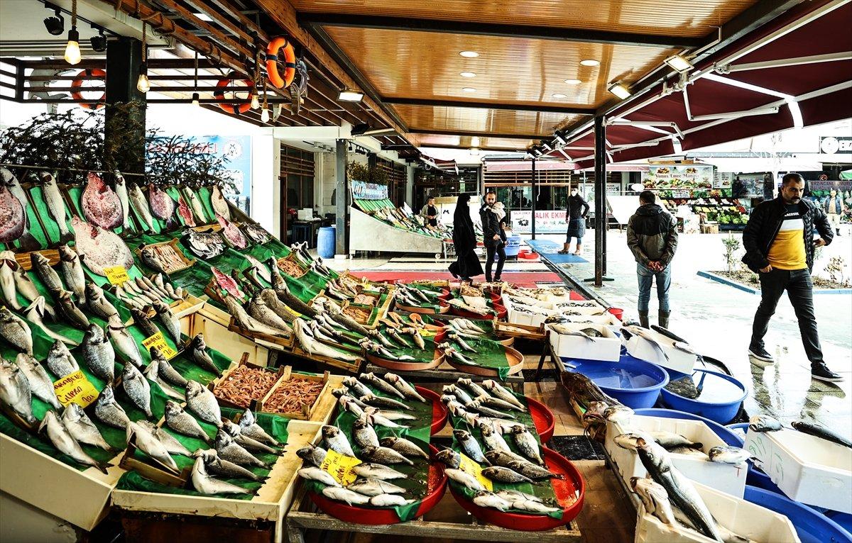 İstanbullu balıkçılar: Fiyatlar oldukça iyi #3