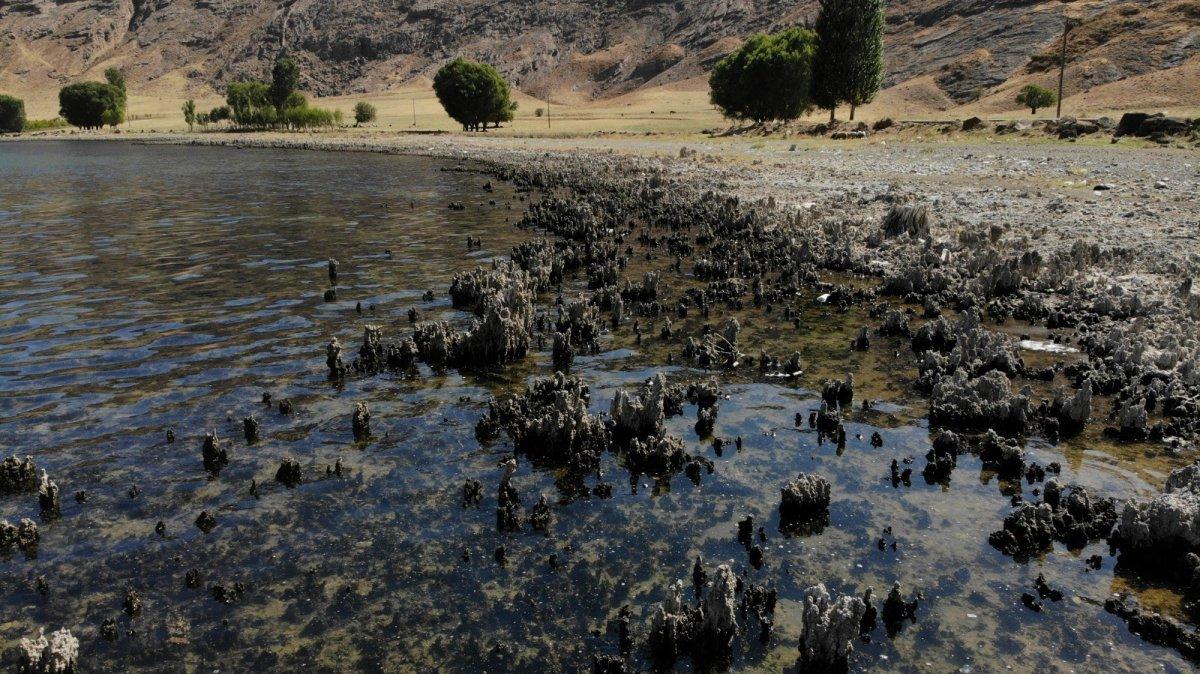 Van Gölü'nün suyu çekildi, binlerce yıllık mikrobiyalitler gün yüzüne çıktı #4