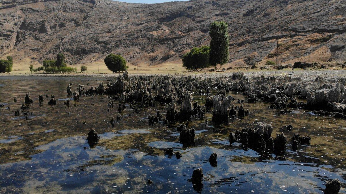 Van Gölü'nün suyu çekildi, binlerce yıllık mikrobiyalitler gün yüzüne çıktı #1