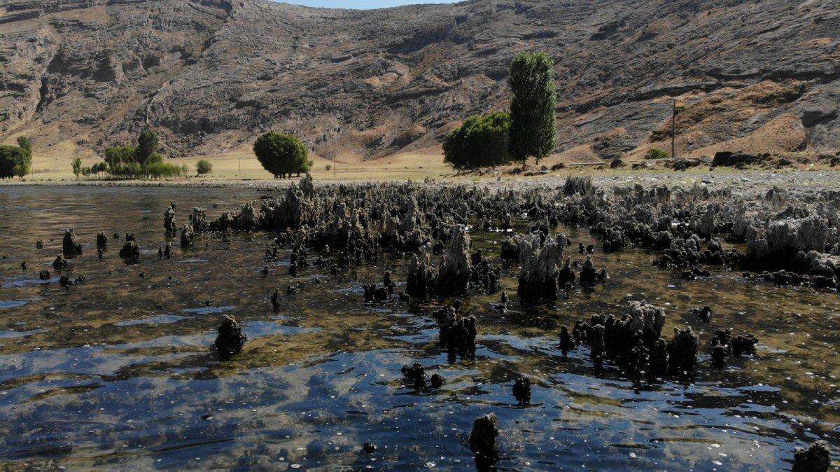 Van Gölü'nün suyu çekildi, binlerce yıllık mikrobiyalitler gün yüzüne çıktı #3