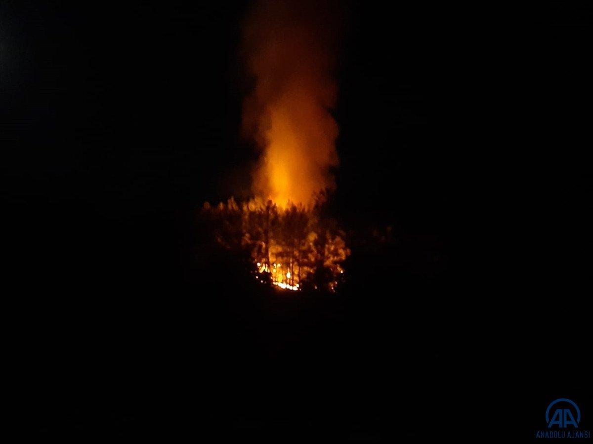 Fethiye de orman yangını #1