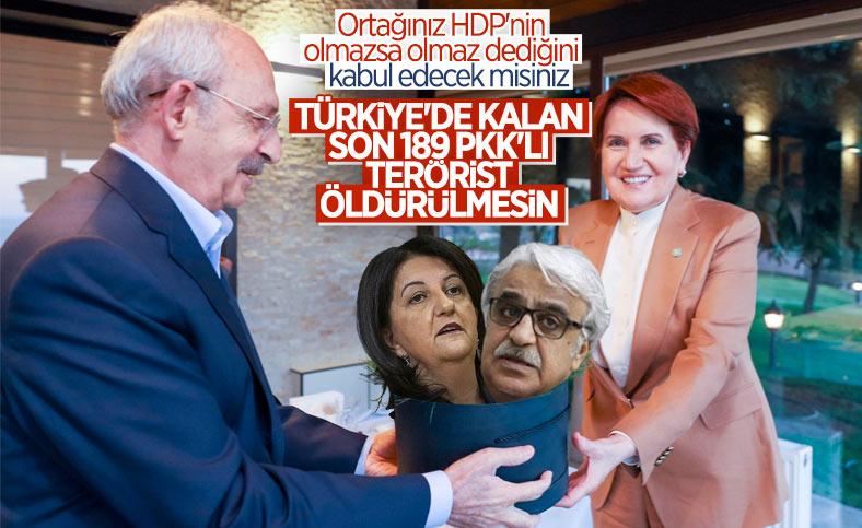 HDP'nin Millet İttifakı'na dayattığı politika şartları belli oldu
