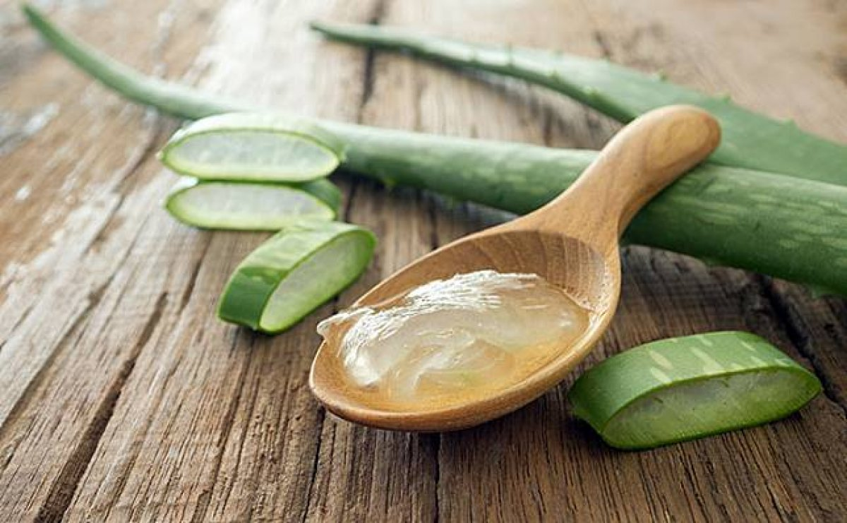 Aloe vera bitkisi nasıl yenir? İşte tüketebilmeniz için 5 yöntem #1