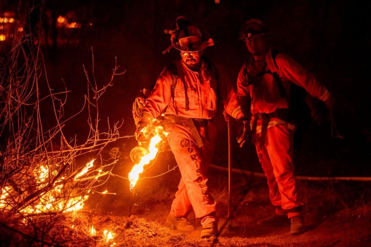 Kaliforniya daki yangında ayı idrarı için yaktığı ateş sorumlu tutuldu #3