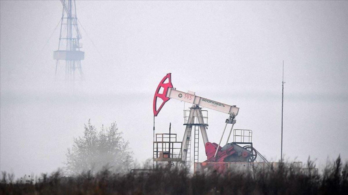 OPEC: Petrol 2045 e kadar enerjide en büyük paya sahip olacak #2