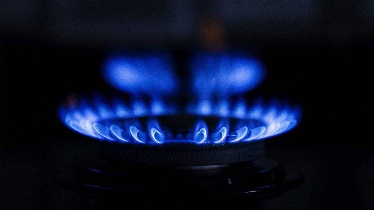 Dünyada doğalgaz fiyatı bir yılda 7, kömür fiyatı 3 katına çıktı #1